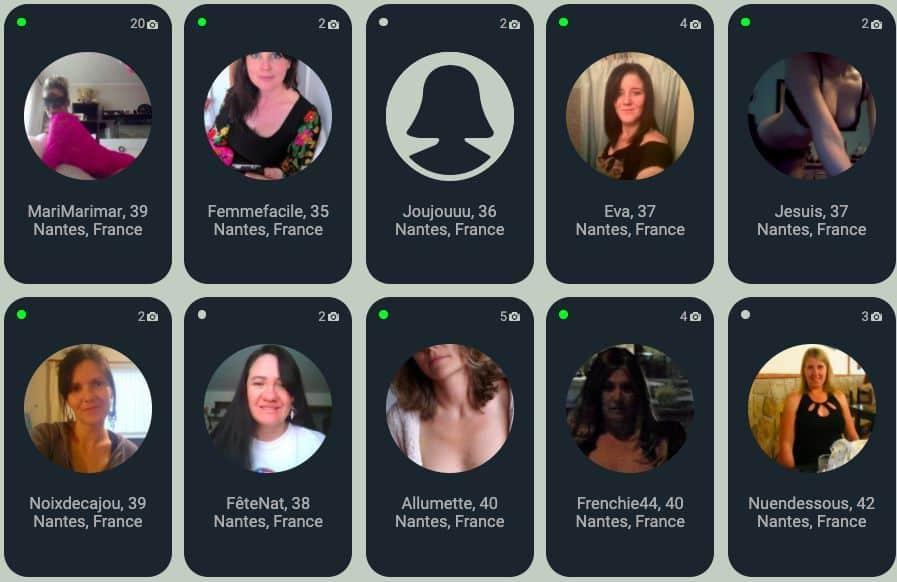 Types de profils que l'on croise sur Milfpins